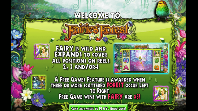 Fairies Forest 1