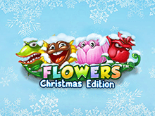 Flowers: Christmas Edition